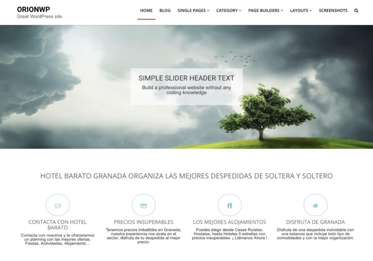 OrionWP Free WordPress Theme